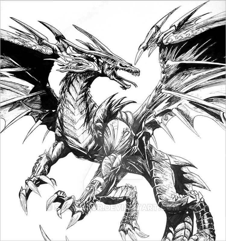 Download Dragon drawign design