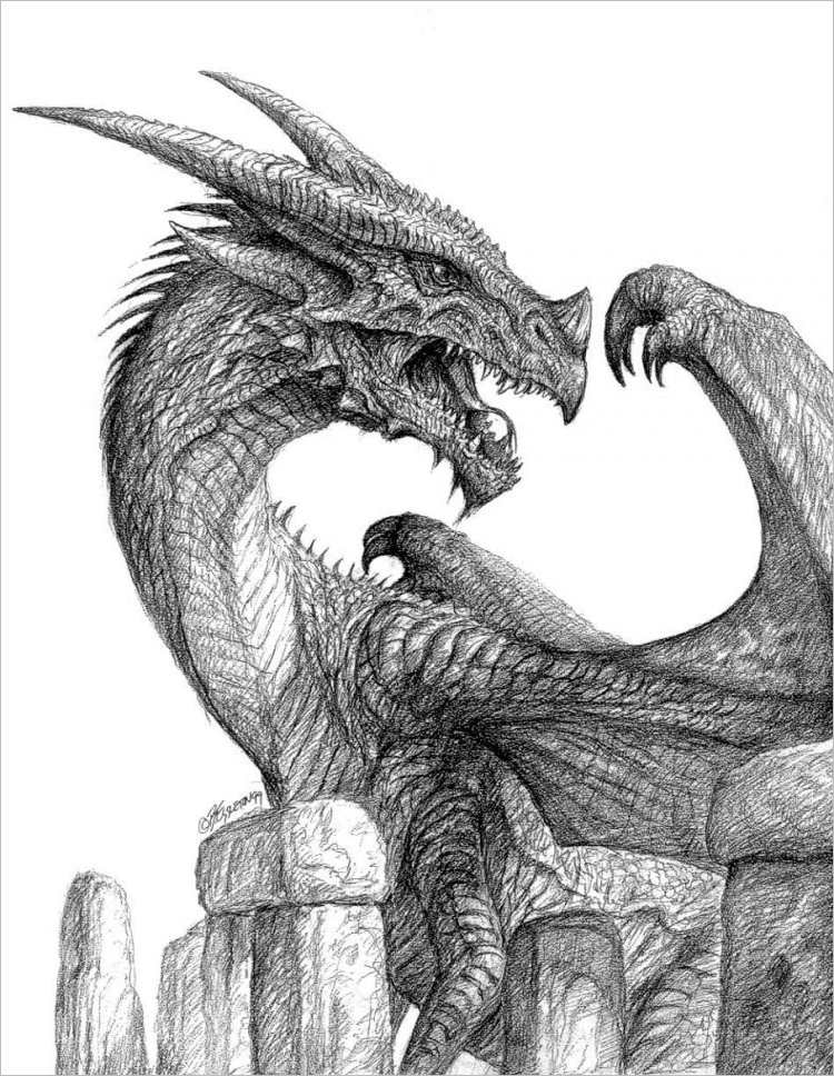 Dragon Fearsome Pencil Drawing