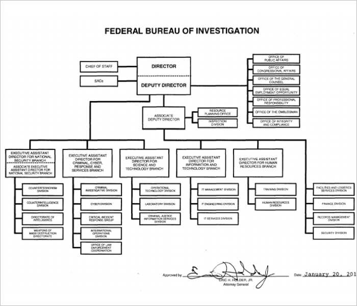 fbi-organizational-chart-templates