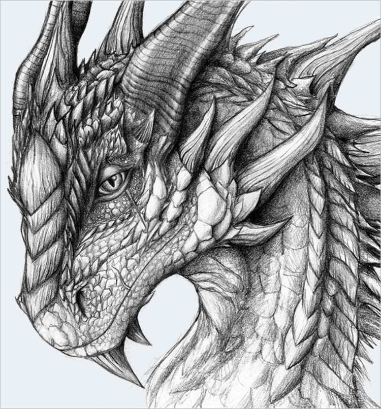 Fierce dragon drawing Design