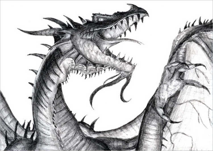 Free Dragon Drawing Design