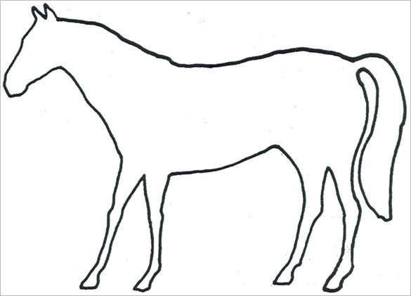 Horse Body Outline Templates