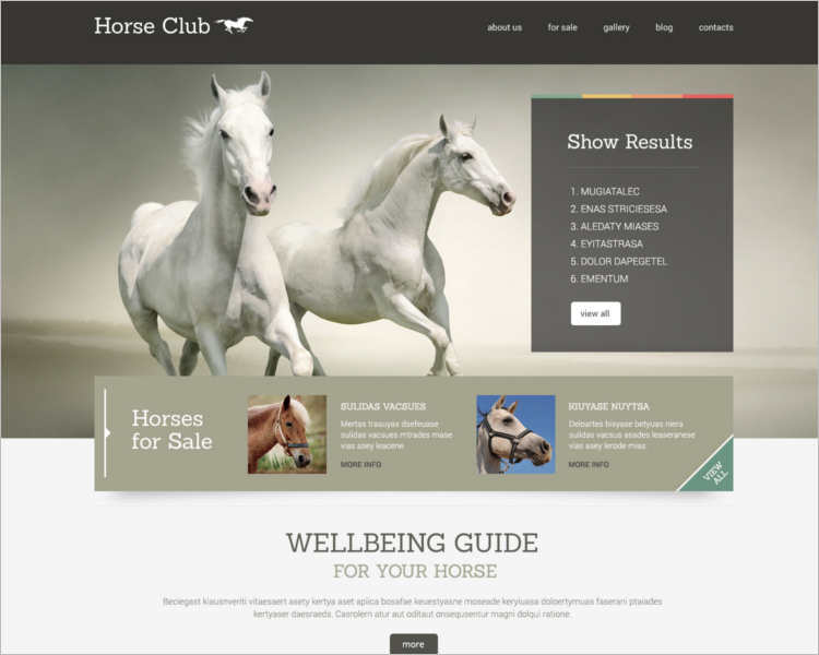 11+ Premium Horse WordPress Themes