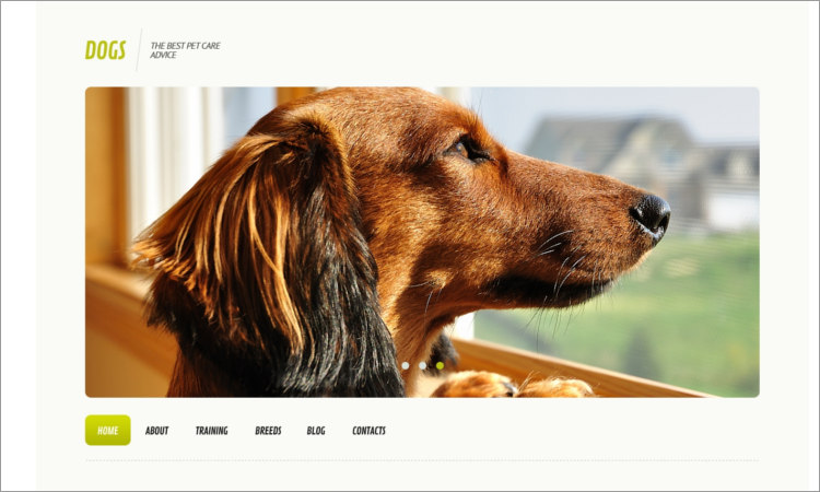 Dog Templates WordPress Themes