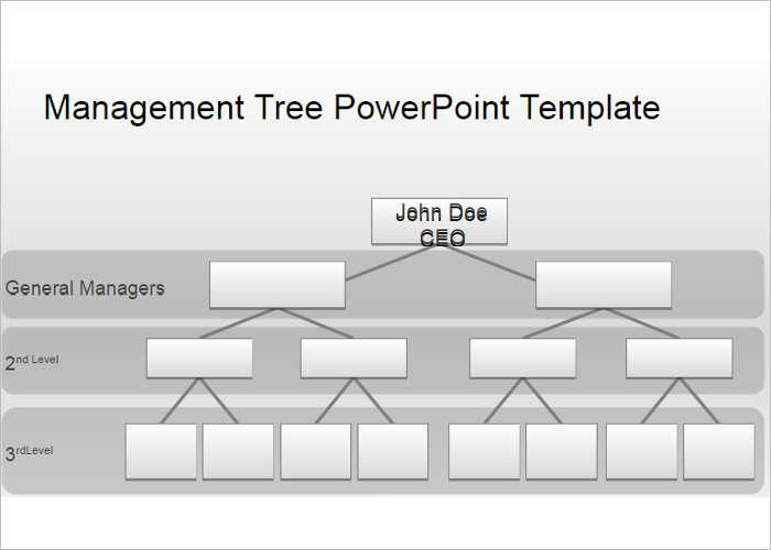 management-organization-chart-templates