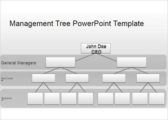 management-organization-chart-templates