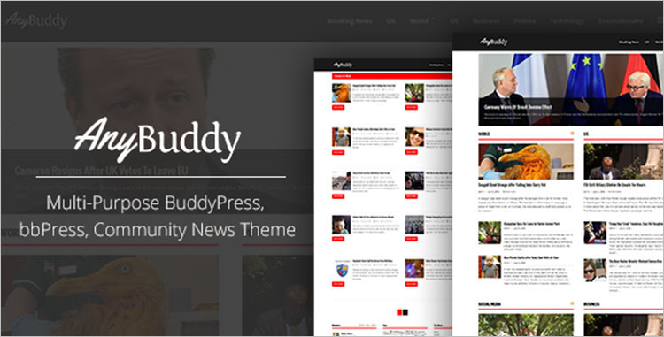 Multi-Purpose BuddyPress Themes & Templates