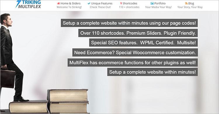 MultiFlex & Ecommerce WordPress Theme