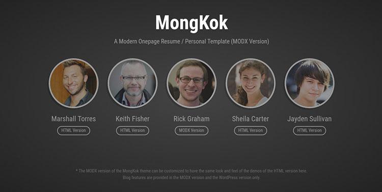 Multipurpose One Page Marketing MODX Theme