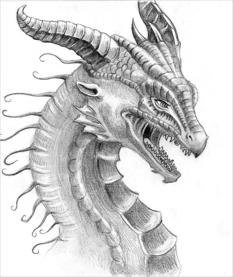 Pencil Dragon face Design