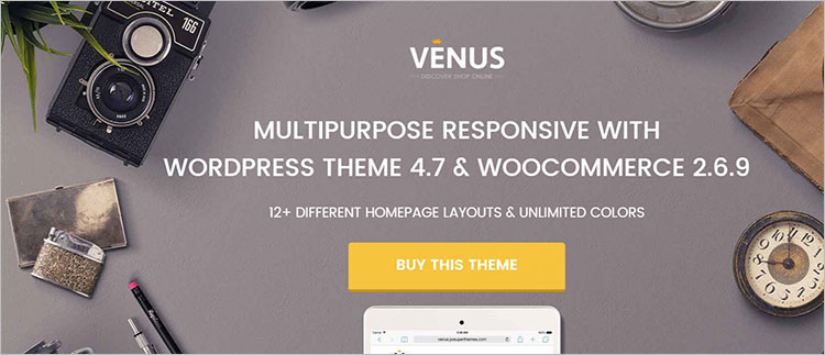 Portfolio WordPress Theme Templates