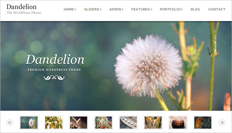 Powerful Elegant WordPress Theme Templates