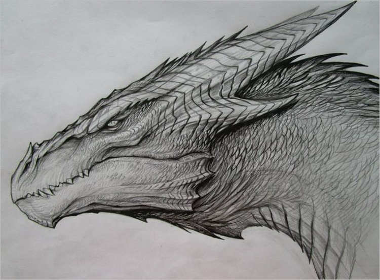 Printable dragon drawing Design