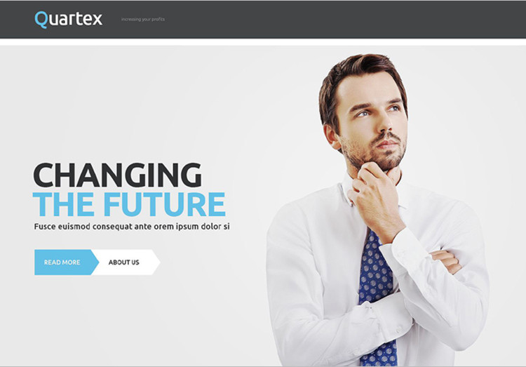 Professional-Business-WordPress-Template