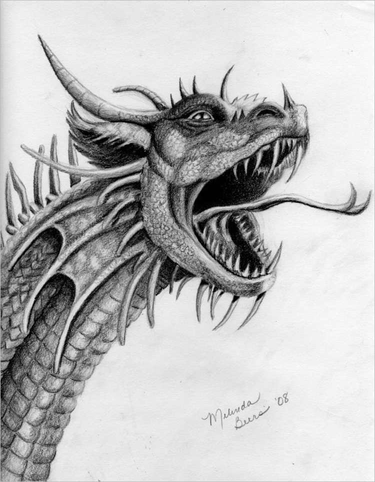 Roaring Dragon Pencil drawing
