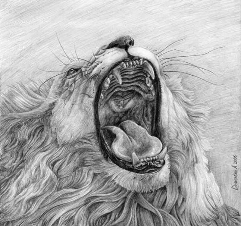 Roaring Lion Mouth Drawing Design