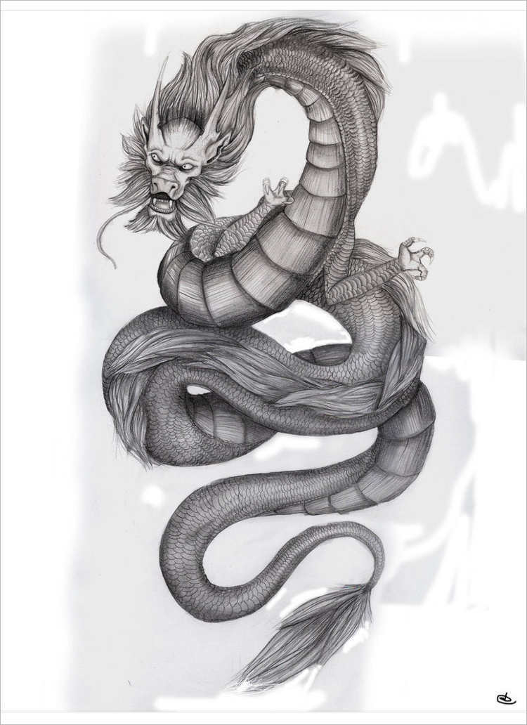 Snake dragon drawing Design