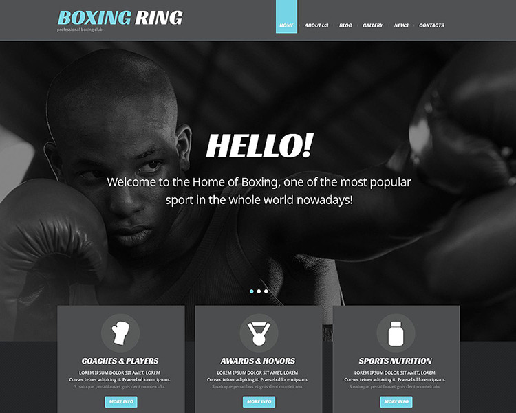 Sports WordPress Templates & Templates