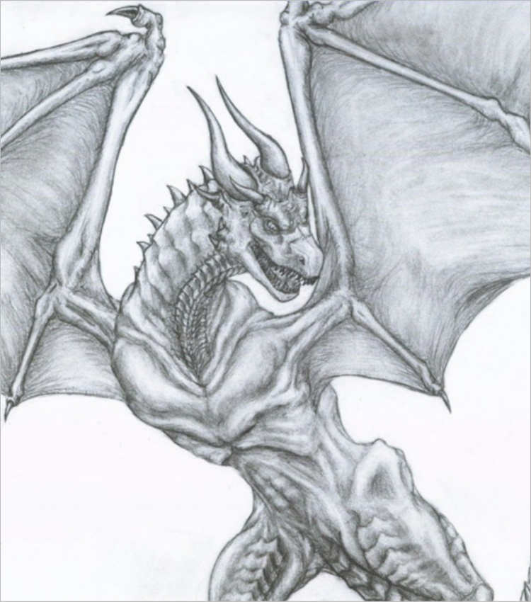 Unique Pencil Drawing dragon design