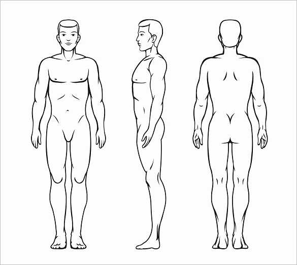 Vector Body Outline Temoplates