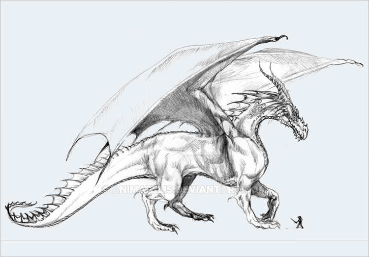 Vintage Dragon pencil drawing