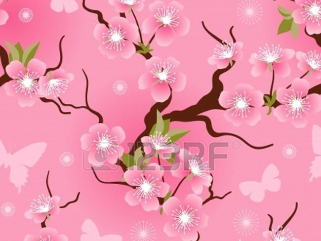 cherry blossoms 26