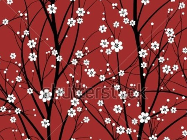 cherry blossoms 30