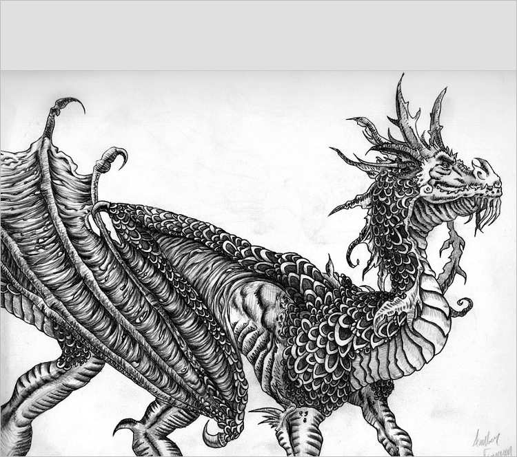 fabulous Dragon Drawing Design
