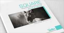 51+ PSD Catalogue Mockups