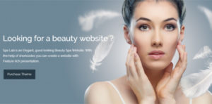 40+ Fashion Blog Wordpress Themes