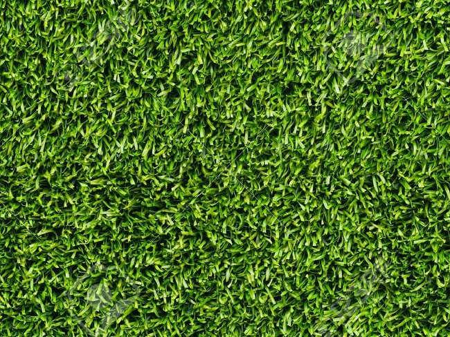 Artificial Grass Lawn Texture Design
