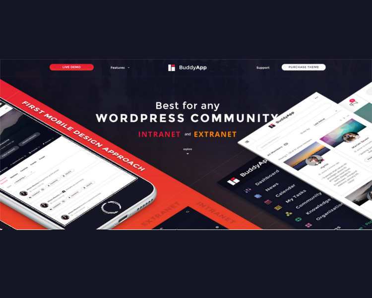 Buddypress WordPress Intranet Template