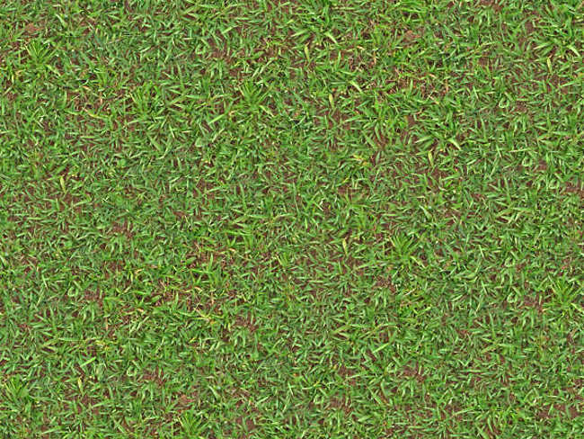 Fully Mixed Lawn Texture Design