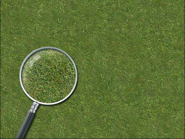 Lawn Fawn Texture Design