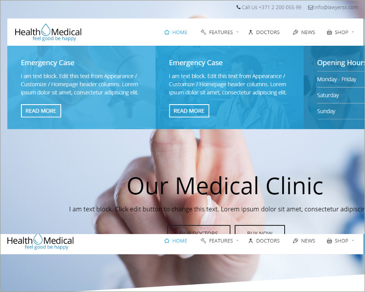 Medical Acupuncture WordPress Theme