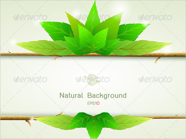 Natural Organic Paper Texture