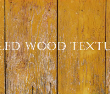 Peeled Wood Textures
