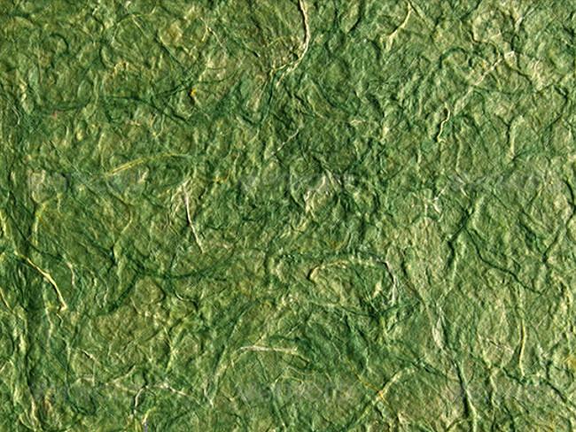 Perchment Moss Paper