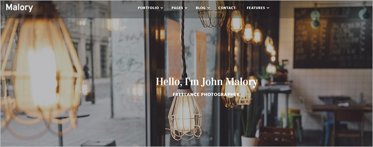Photography Design Theme Templates