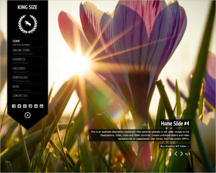 Photography Selling WordPress theme