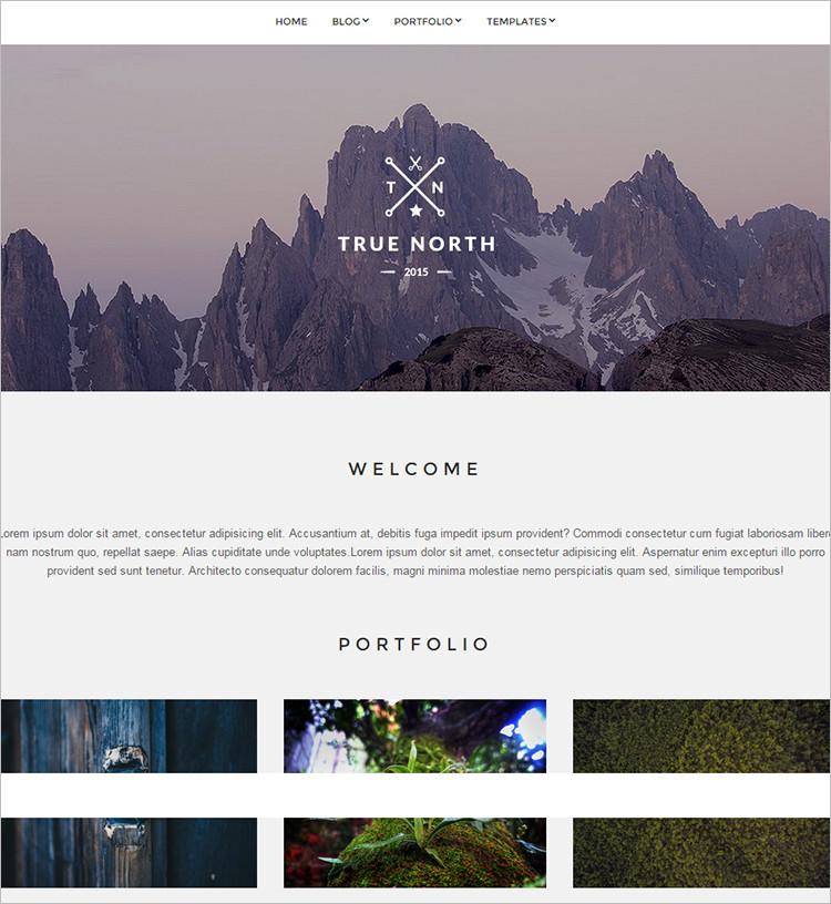 Popular WordPress Portfolio Themes