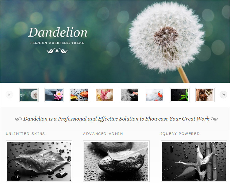 Portfolio Selling WordPress Theme