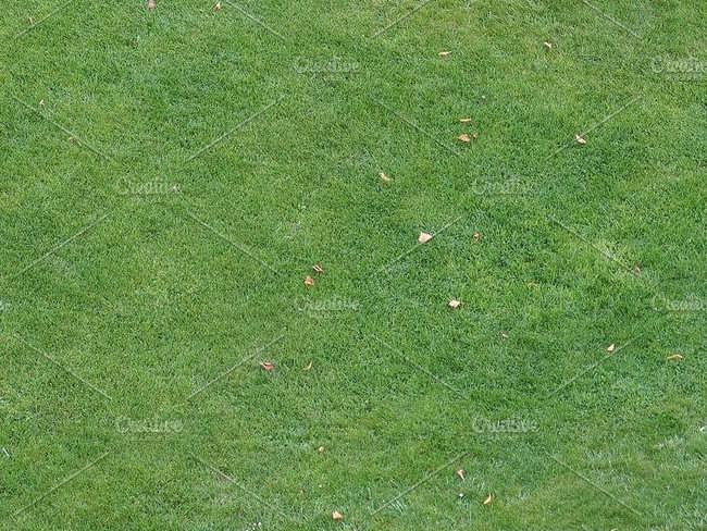 Premium Lawn Texture Design
