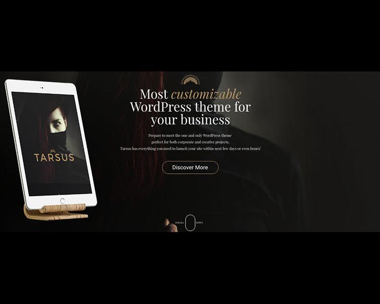 Profitabel Selling WordPress Themes