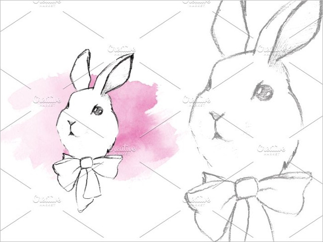 Rabbit Sketch Image Design