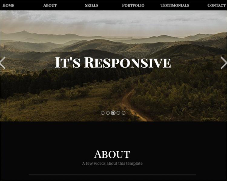 Responsive Portfolio Tumblr Theme