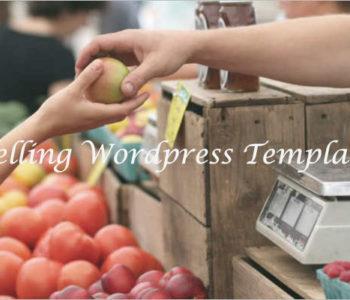 Selling WordPress template