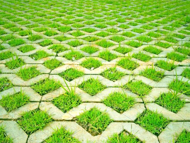 Striped Lawn texture design