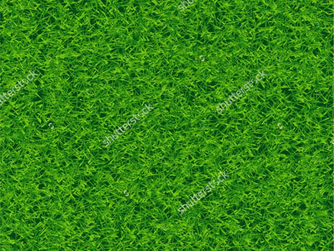 Vector lawn texture design