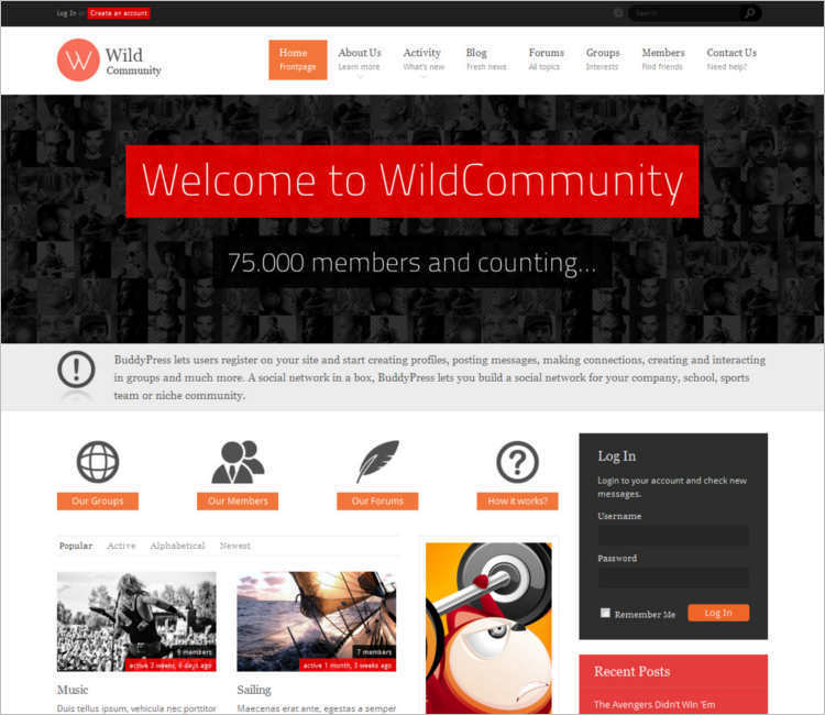 WordPress Jetpack Buddypress Template